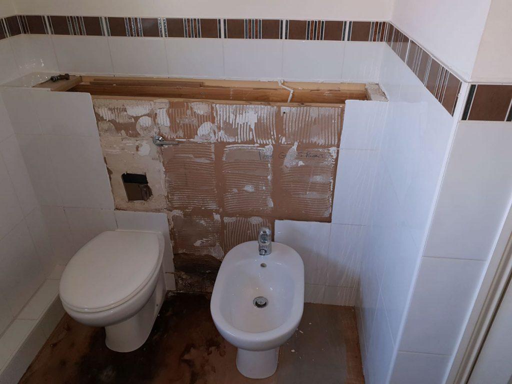 Cloakroom needs new toilet